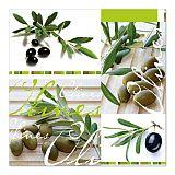 Servietten, 3-lagig Design Edition 1/4-Falz 33 cm x 33 cm Olives, Papstar (81572), 180 Stück