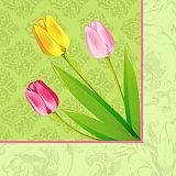 Papstar Servietten, 3-lagig 1/4-Falz 40 cm x 40 cm Bella Tulipa, 84270, 400 Stück