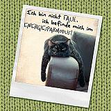 Servietten, 3-lagig Design Edition 1/4-Falz 33 cm x 33 cm Ich bin nicht faul…, Papstar (86020), 180 Stück