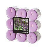 Flavour by GALA Duftlichte Ø 37,5 mm, 16,6 mm violett - Lavender, Gala (96911)