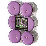 Flavour by GALA Maxi Duftlichte Ø 58 mm, 24 mm violett - Lavender, Gala (96921), 144 Stück