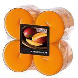 Flavour by GALA Maxi Duftlichte Ø 59 mm, 24 mm pfirsich - Mango-Papaya in Polycarbonathülle, Gala (96994)