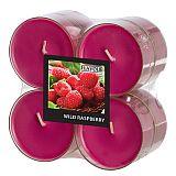 Flavour by GALA Maxi Duftlichte Ø 59 mm, 24 mm weinrot - Wild Raspberry in Polycarbonathülle, Gala (96995)